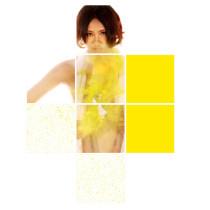 Yellow No.2