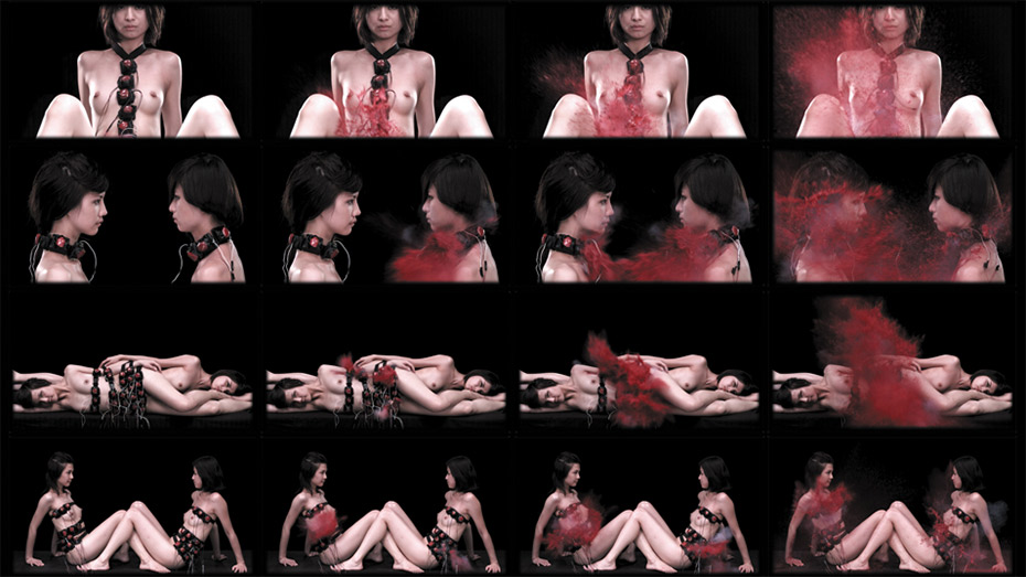 Bloody Beauty | video | 5'00"